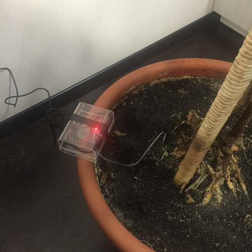 NodeMCU Moisture Sensor Installed